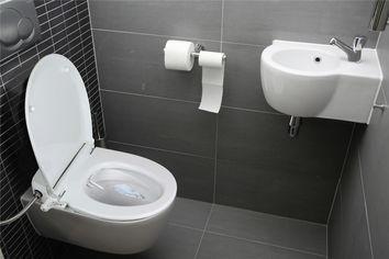 abattant wc japonais lavant primo sarodis. Black Bedroom Furniture Sets. Home Design Ideas